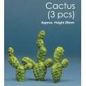 JWM-2008 Cactus (3)_26051