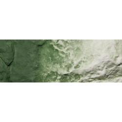 Earth Color green undercoat_2641