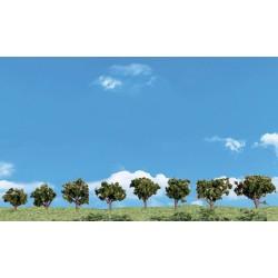785-SP4148 Mini Deciduous Trees_27648