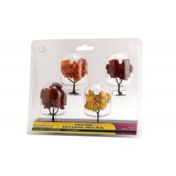 Autumn Trees / Herbst-Bäume_27660