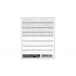 785-DT575 Lettering schwarz & weiss_2993