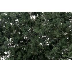 785-F1130 Fine-Leaf Foliage, dunkelgrün_3006