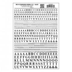 785-MG718 Cond. Roman R.R. schwarz_3250