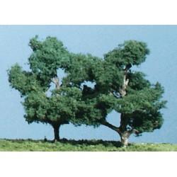 Obstbäume 9cm hoch_3712