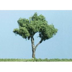 Laubbäume 11,5 cm_3716