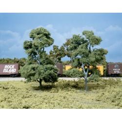 grosse alte Bäume 18cm hoch_3721