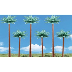 Palm Trees_3807