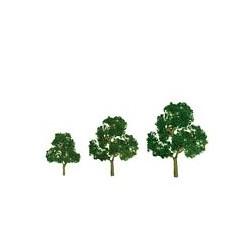 """373-92040-DEF 5.5"""" Premium Deciduous (1 Baum)_39360"""
