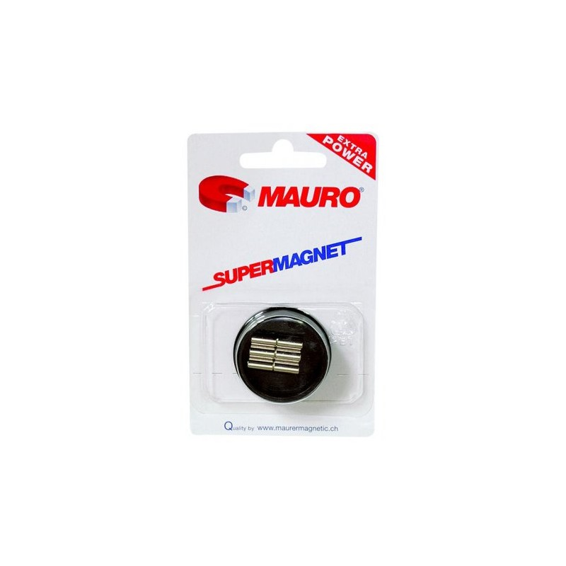 1406 2994382 Supermagnet 5 X 10 Mm 6 Old Pullman