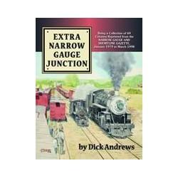 (91653) Extra Narrow Gauge Junction_4491