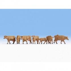 HO Kühe, braun_47023
