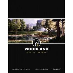 Woodland Scenics Katalog_55221