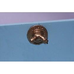 164-515 O Hydrantenanschluss am Haus_5600