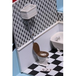 164-523 O Cast Iron Toilet with wall tank_5607