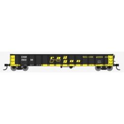 HO 53' Railgon Gondola - C&NW 350258_57670