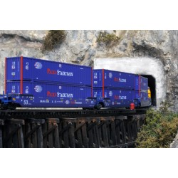 N Gunderson Maxi-IV Well Car BNSF / Hub Group Cont_60125