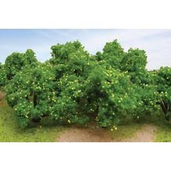 373-92123 HO Lemon Tree Grove 6/pkg_9958